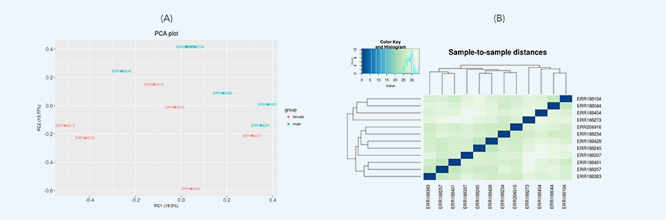 PCA and Hierarchical clustering plot